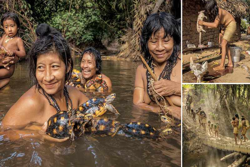 Manu National Park in Peru, Why do tourists visit the Amazon Rainforest